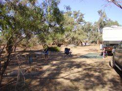 camp-at-currawinya-np