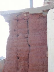 pardelote-nesting-holes-in-old-chimney