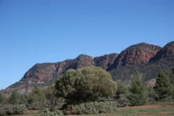 flinders-ranges-2-037-medium