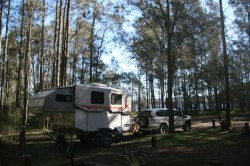 Camp at Myall Lakes