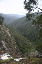Boonoo Boonoo Falls #2 (Small)
