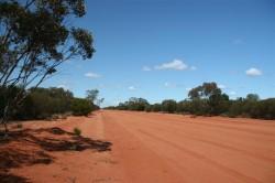 Red Dirt Road to Lake Cargelligo (Medium)