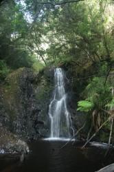 130311 Hagarth Falls Strahan Med