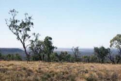 20140626-IView from Mt Oxley Med