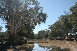 20140702-Bulloo River Quilpie Med