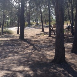 20160308 Lime Bay Camping Area Med
