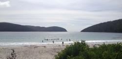 20160310 Fortesque Bay Tasman NP Med