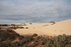 20170713-4003 Sand Dunes Behind Walls of China #3 Med