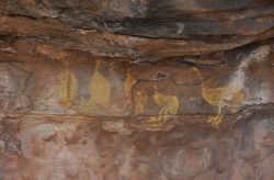20170815-4226 Rock Art Mt Grenfell Med