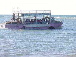 lark-fully-afloat-at-bustard-beach