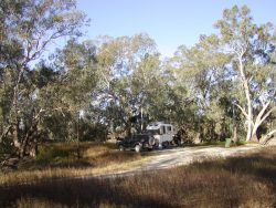 camp-at-trilby-station