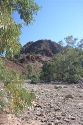 flinders-ranges-2-033-medium