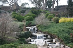 20130802 Cowra Japanese Garden #16 Med copy