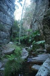 20140808-Wards Canyon at Carnarvon Med