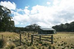 20140814-Brackens Hut Coolah Tops NP Med