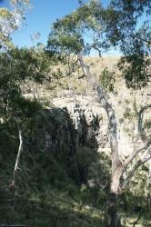 20140814-Norfolk Falls Coolah Tops NP Med