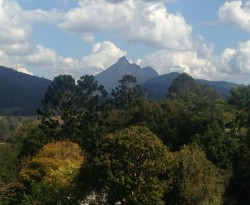 20150819 Mt Warning from Gallery Med