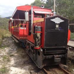 20160303 Ida Bay Train Med