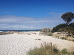 20160320 Beach at Cosy Corner Bay of Fires CP Med