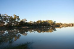 20161116 Early Morning at Menindee Med