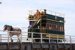 20161121-victor-harbour-tram-med