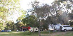 20170401 Camp at Nicholson Med