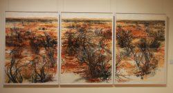 20170716-4035 Broken Hill Art Gallery Med