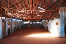 20170807-4209 Inside Currawinya Shearing Shed Med