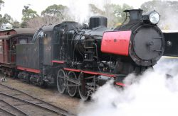20170906-4347 Maldon to Castlemaine Steam Train Med